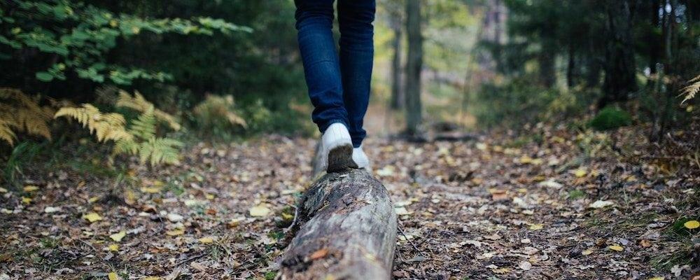 Fernie Hiking Trails