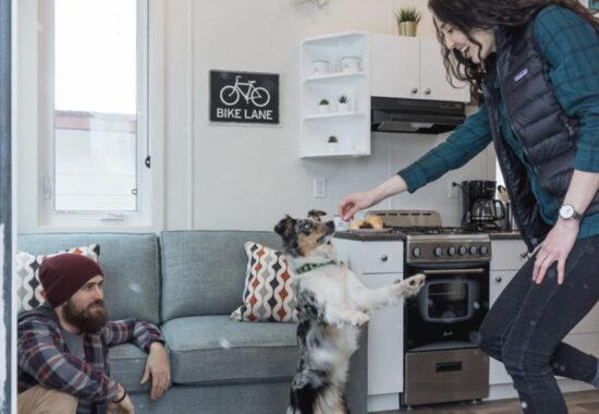 Fernie Tiny Homes Dog Friendly